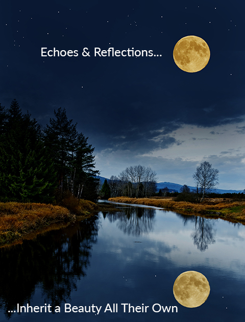 Echoes and Reflections Image